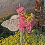 1515-Babys-Tears-Golden-Orchis-Fairy-Small