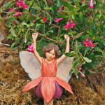 1528-Fuchsia-Lottie-Hobby-Fuchsia-Fairy-Small