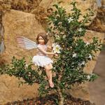 1556-Snowrose-Kyoto-Wild-Cherry-Blossom-Fairy-Small
