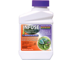 P32126 Infuse