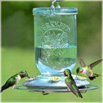 Hummingbird Feeder Mason Jar