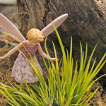 corus miniature