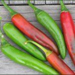 Pepper Serrano Chili