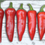 Pepper Giant Ristra F1 Chile